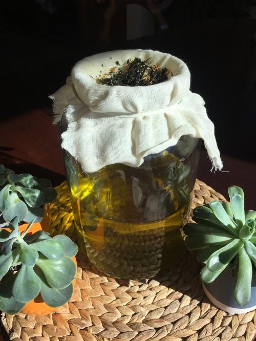 Mayan Abdominal Massage Oil Seattle